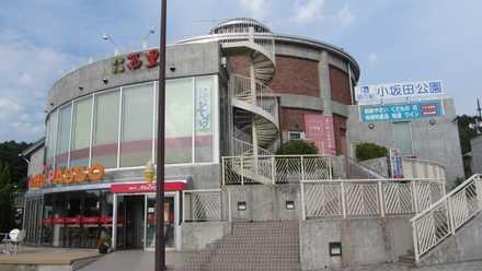 小坂田公園 1