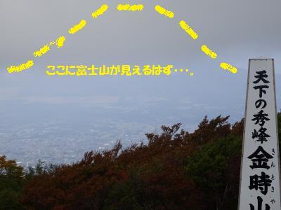 DSC00248_convert_20141025181702.jpg