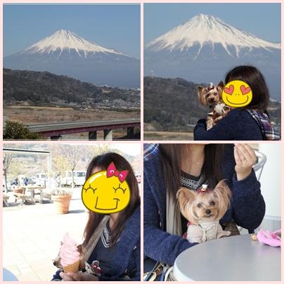 富士山ソフト