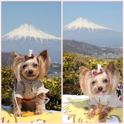 富士山バックにノンモデル