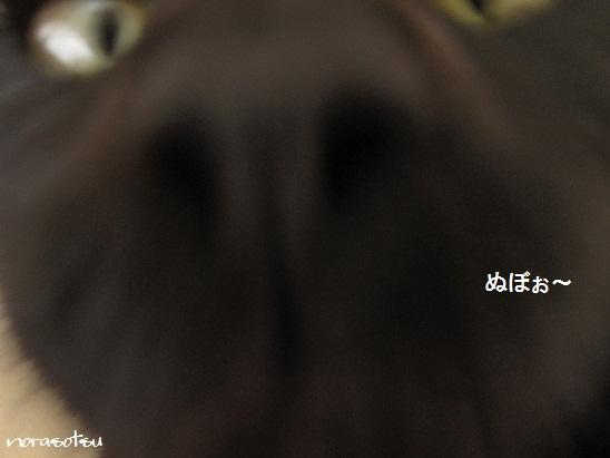 018_20120117204610.jpg
