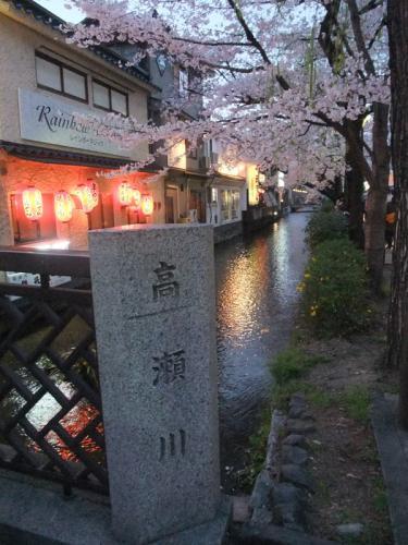 高瀬川の桜10