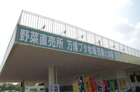 万博公園ツアー23