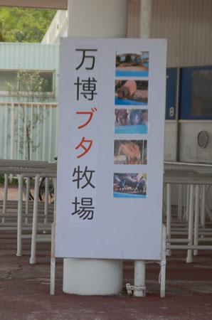 万博公園ツアー24