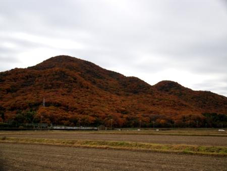 1203_sagoshi4.jpg