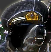police;dog01n180