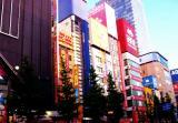 akiba2010.jpg