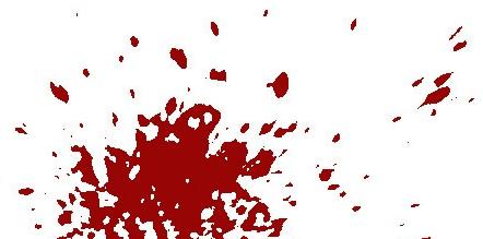 bloods003.jpg