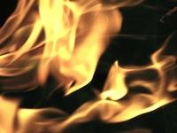 fireguard01n200.jpg