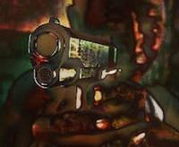 gun02n200.jpg
