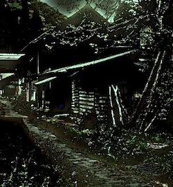 kaiobhouse250.jpg