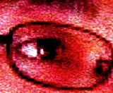 kato_eye.jpg