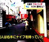nittere_shogen.jpg