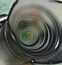 paparazzi01n200.jpg