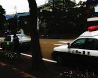 policeguardcars.jpg