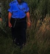 policemanintobush.jpg