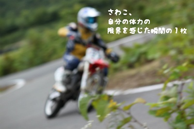 real1-3_0254.jpg