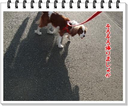 0220110203.jpg
