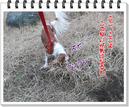 0520110124.jpg