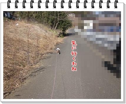 0620110227.jpg