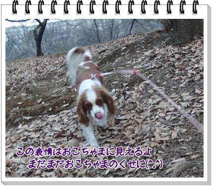 0720110206.jpg