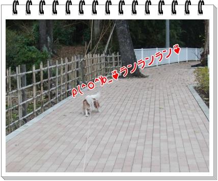 0920110110.jpg