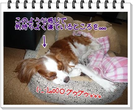 2011041201.jpg