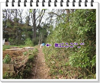 2011041703.jpg