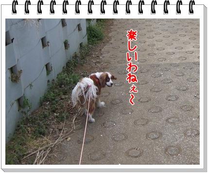 2011041707.jpg