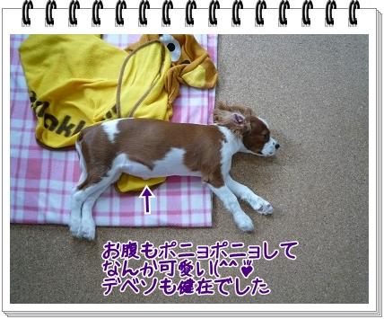 2011050403.jpg