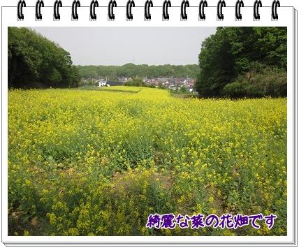 2011050501.jpg