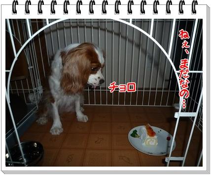 2011050511.jpg
