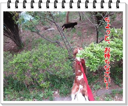 2011051503.jpg