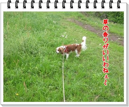 2011051505.jpg