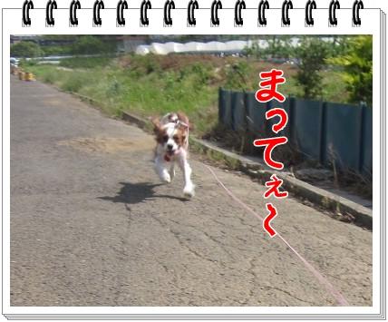 2011052908.jpg