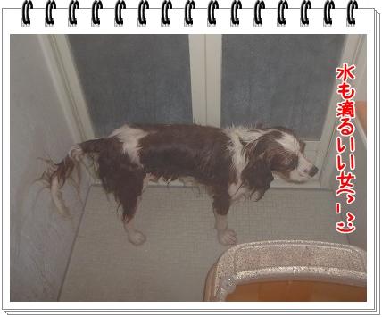 2011061208.jpg