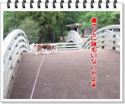 2011070907.jpg