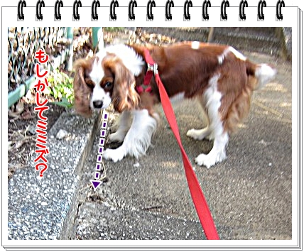 2011071302.jpg