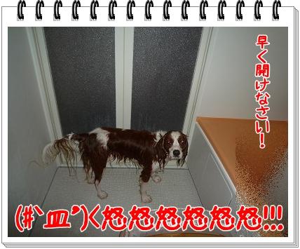 2011071404.jpg