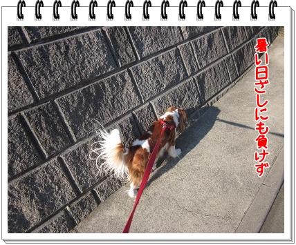 2011071701.jpg