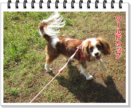 2011071802.jpg
