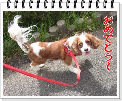 2011071804.jpg