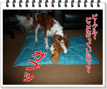 2011082801.jpg