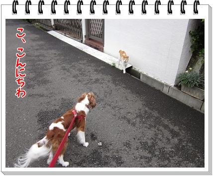 2011090403.jpg