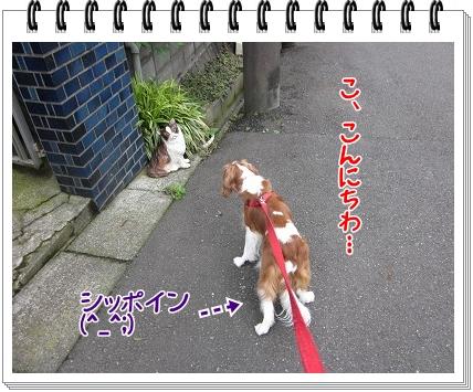 2011090410.jpg