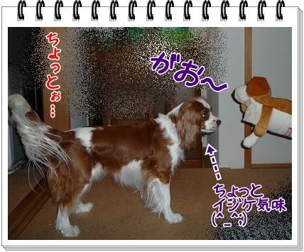 2011090507.jpg