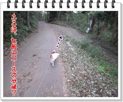 2011100806.jpg