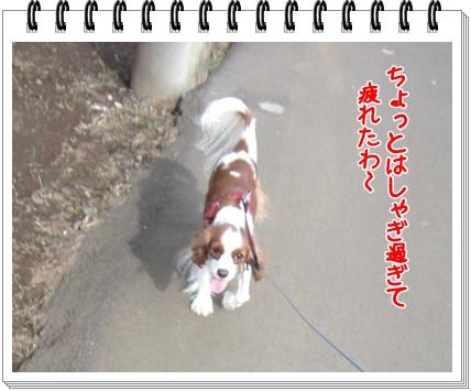 2011100810.jpg