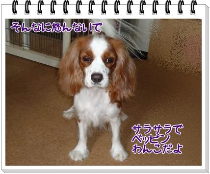 2011101013.jpg