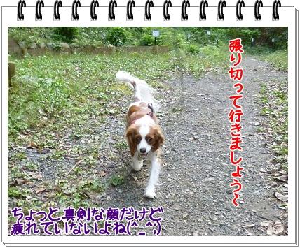 2011101101.jpg